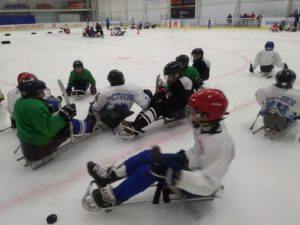 Следж-хоккей Пересвет