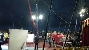 Наши дети посетили Цирковое представление цирка-шапито AllE